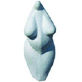 Illustration du profil de Marc Simon